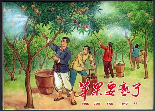 苹果要熟了(32开精装)